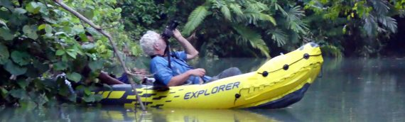 Javan Rhino Expedition August 2022 – Spaces Available